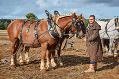 DSC05657 (Andy Oldster) Tags: eashing godalming farm plough ploughing heavyhorses shire sony alpha a65 slt
