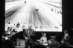 The Sonics (PETEDOV) Tags: thesonics festival yoursandowls garage garagerock 60s rock rockandroll rocknroll livemusic live peterdovgan petedov canon canonaustralia concertphotography concert sax saxophone blackandwhite bw monotone