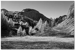 "Alpe Devero (""Deca"") Tags: montagna mountain piemonte pedmont alpedevero biancoenero blackandwhite effettoir ireffect monocromatico monochrome"