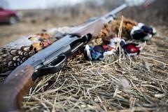 Browning (Shane Sadoway) Tags: browning gun shotgun rifle arms pheasant birds hay straw outdoors