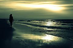 lost (mesana62) Tags: spain beach yellow cylon13 sunset sun silhouette costa black ocean sea andalucia atardecer atlantico atlantic skyline sky samsung bokeh mirror reflection doana coto almonte