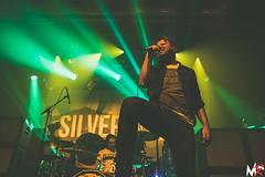 Silverstein (2)