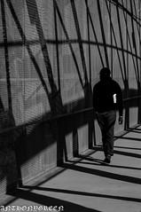 B&W2016(NY) (bigbuddy1988) Tags: bw people photography wow nikon d300 usa city newyork nyc new shadows patterns contrast