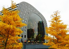 Markthal - herfst 2016 (Hipstagirl 2011) Tags: foliage markthal rotterdam herfst fall blaak architecture