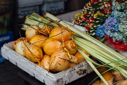 Coconuts in Market, Ubud Bali