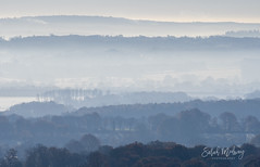 From Ide hill - mist over Kent Weald (sarah medway) Tags: kent weald idehill kentweald sunrise mist edenbridge mistlayers