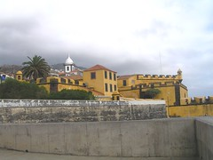 Funchal, Madeira , NGID139921830 (naturgucker.de) Tags: ngid139921830 naturguckerde funchal cwolfgangkatz