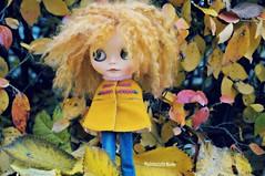 Blending in the Scandinavian fall colors (mademoiselleblythe) Tags: blythe custom zaloa mformonkey stellinna squeakymonkey stockholm fall october