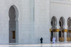 Sheikh Zayed Grand Mosque #2 (Jac) Tags: sheikh zayed grand mosque nikon d7200 dubai 2016 abu dhabi