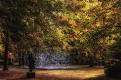 Art in Autumn (Eric@focus) Tags: firmament museum trees autumn fall herfst automne sculpture matrix space polygonal structure antonygormley