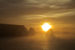 IMG_0425 (Martin P Perry) Tags: freshwater bay freshwaterbay sea coast sunrise dawn daybreak clouds