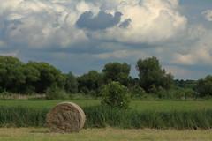 2016_06_12_03655 (bencze82) Tags: magyarorszg hungary hvzgyrk nyr summer canon eos 700d voigtlnder apolanthar 90mm f35 slii