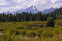 The Tetons. Photo from Pacific Creek (spotwolf5) Tags: tetonrange