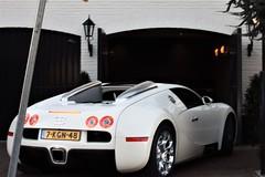 7-KGN-48 (azu250) Tags: bugatti veyron 164 white wit