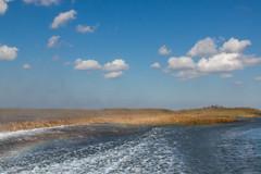 Everglades II (saparmo) Tags: seleccionar miami florida nubes cielo agua