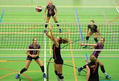 1B260950 (roel.ubels) Tags: vv utrecht eurosped galgewaard volleybal volleyball 18 finale nationale beker