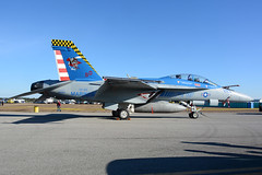 165801 F18F KNHK. 29-10-16 (MarkP51) Tags: 165801 mcdonnell douglas f18f hornet usn usmc usmarines mcas patuxentriver nhk knhk maryland usa airshow avaiation airplane plane image markp51 aircraft nikon d7100 aviationphotography