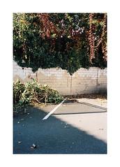 Two Blocks Away From Here (Punkroyaltiger) Tags: analog film mju kodak portra 400 mjuii