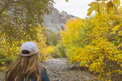 Finding Gold [Explore] (aaronrhawkins) Tags: cottonwood tree leaves leaf hike gold yellow fall colors jessica stream streambed provo canyon utah aaronhawkins