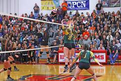 IMG_6851 (SJH Foto) Tags: girls volleyball high school allentown central catholic somerset team teen teenager net battle spike block action shot jump midair