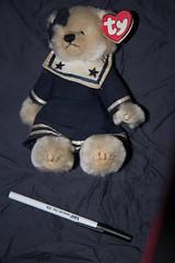 IMG_7434 (armadil) Tags: freecycle stuffedtoy toy teddy teddybear sailorsuit