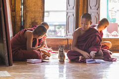 The Monk and the cat in a reading lesson - Myanmar (Burma) (el_mo) Tags: monaco persone shan nyaungshwe birmania myanmarburma