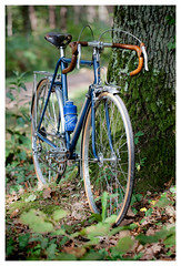 RENE HERSE 1970 (kick-my-pan) Tags: bicycle french bicyclette normandy franais vlo brooks vintagebike vintagebicycle randonneur randonneuse weinmann superchampion frenchbicycle renherse vloancien vlodecollection