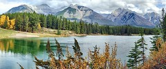 Johnson Lake, Banff National Park, Alberta - ps6468-77 (photos by Bob V) Tags: autumn panorama fallleaves mountains fall rockies autumnleaves autumncolours alberta banff rockymountains albertacanada banffnationalpark fallcolours banffalberta johnsonlake banffpark banffalbertacanada cans2s mountainpanorama