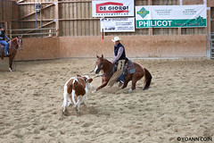 BJ1A7795 (yoann.coin) Tags: horse france western cutting ncha remoray