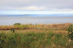 Norway 13 (Detlef Klein) Tags: seascape oslo moss gods fjord refsnes