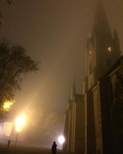 The domkyrka of Linköping, somewhat foggy #nofilter