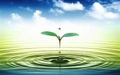 Green1 (Dotto Francesco Consulting Green) Tags: casa ambiente fisco desig detrazioni