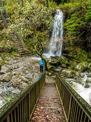 20151115-_1150473.jpg (IanRolo) Tags: bridge river y waterfalls betwsycoed betws coed snowdonia miners afon minersbridge llugwy afonllugwy riverllugwy