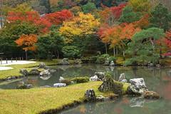 Tenryu-ji (Tokyo Views) Tags: japan garden japanese kyoto style autumnleaves unesco autumncolors arashiyama kansai worldheritage