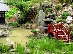 Private zen garden (Raffa2112 *off*) Tags: bridge water japan garden japanesegarden ponte acqua japanesebridge giappone zengarden giardino giardinozen ponticello giardinogiapponese raffa2112