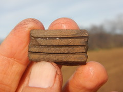 An incised sherd recovered on the surface at Cane Notch. (MTBradley) Tags: macro us ceramics unitedstates tn incised artifact cazuela sherd surfacefind canenotch 40wg143