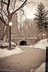 (DC Travelphotography) Tags: newyork unitedstates newyorkstate sanjuanhill sanjuanhillnewyork 65thstreettransverse