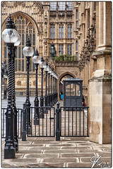 Houses of Parliament (ViTaRu) Tags: uk england building london westminster architecture canon britain outdoor housesofparliament row symmetry lamps palaceofwestminster ef24105mmf4lisusm 5dmk2