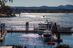 Victoria Harbor (WalrusTexas) Tags: canada victoria britishcolumbia harbor sunlight water boat pier