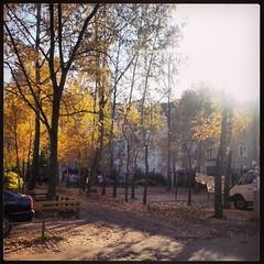 autumn leaves (lubovphotographer) Tags: photograph lge455 phonephotography smartphonephotography smartphoto smartphonephotop picturethis photo picture autumn panorama    dmitrov