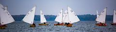 Hoofer Sailing Club Intergalactic Regatta (m2 Photo) Tags: hoofers sailing club madison mendota uw universityofwisconsin