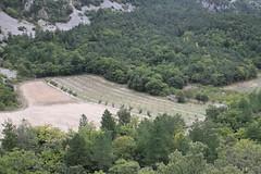 Sommet de la Plate-Pic du Comte_120 (randoguy26) Tags: beaumont ventoux mont plate comte vaucluse sommet pic