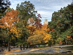 Central Park NYC (neilalderney123) Tags: 2016neilhoward newyork nyc autumn fall centralpark trees seasons