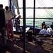 Ägypten 1999 (465) Luxor: Felukenfahrt zur Gezira el-Mozh (Banana Island)