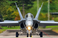 McDonnell Douglas F/A-18C Hornet (larshkj) Tags: swissairforce meiringen 2016 jets military visipix