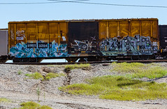 (o texano) Tags: houston texas graffiti trains freights bench benching cuate rtd by uk db zee wh