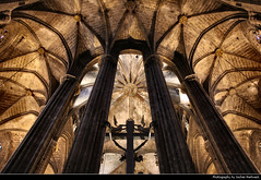 Catedral de Barcelona, Barcelona, Spain (JH_1982) Tags: catedral santa cruz eulalia creu eullia cathedral holy cross saint gothic archbishop architecture architektur ceiling roof column columns roman catholic kathedrale gotisch landmark building historic historisch barri gtic pla seu cathdrale saintecroix cattedrale interior innen looking up church religion religious spiritual christian christianity         barcelona barcelone barcellona     catalonia catalunya spain espana spanien espaa espagne spagna