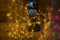 Christmas Tree Festival 6 (ianwyliephoto) Tags: corbridge northumberland tynevalley tynedale christmas treefestival 2016 standrewschurch lights twinkle festive community village