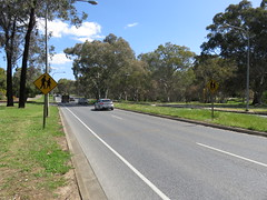 1990s 'Pedestrians' warning sign on southbound side of Golden Grove Rd, Wynn Vale/Redwood Park (RS 1990) Tags: goldengroverd wynnvale redwoodpark teatreegully adelaide southaustralia thursday 27th october 2016 trafficsign