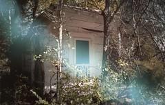 haint, saint, seeing eye empty socket (roadkill rabbit) Tags: abandoned house trees weeds vines shotgun louisiana bayou